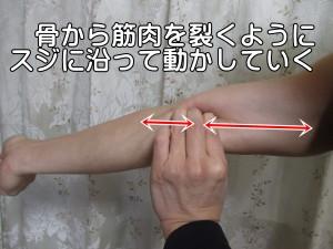 骨から筋肉を裂くようにスジに沿って動かしていく