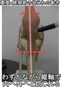 膝関節ねじれの動き