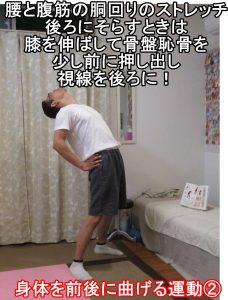身体を前後に曲げる運動②