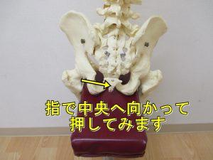 尾骨を押す