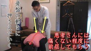 動体療法の仙骨リリース。仙骨リリースも単純に仙骨を固定するだけモノでなく、骨盤の動きに合わせて押さえていったり、触る位置を変えたり、骨盤のゆがみに対して方向性を調整したり、微振動を加えたりと様々な技術を入り交えながら施術します。患者さんが痛くない程度に前屈してもらうのは、どんな時も同じです。また、前屈が痛かった人も骨盤矯正がなされて、やっている途中で楽に前に屈めるようになる人も多いです。