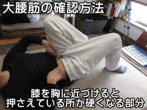 大腰筋の確認方法