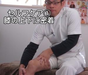 膝の筋膜リリース①