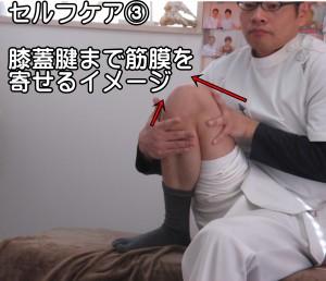膝の筋膜リリース③