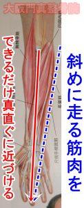 前腕の筋肉の捻じれを取る