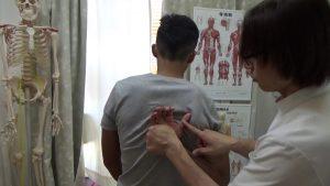 フィジークの肩甲骨はがし (5)