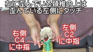 左に歪んでいる頚椎の上は歪んでいる左側にタッチ
