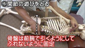 骨盤は前腕で引くようにしてぶれないように固定