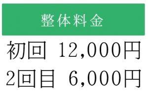 初回12000円 2回目6000円